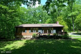 43536 Spinks Ferry Road, Leesburg, VA 20176 (#LO9947179) :: Pearson Smith Realty