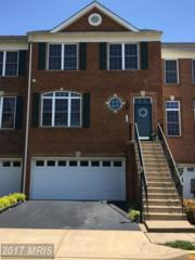 116 Ivy Hills Terrace, Purcellville, VA 20132 (#LO9947734) :: Pearson Smith Realty
