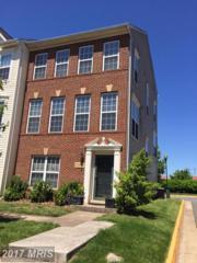 20974 Kittanning Lane, Ashburn, VA 20147 (#LO9948770) :: Wicker Homes Group