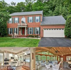20409 Brightwater Place, Sterling, VA 20165 (#LO9948977) :: Pearson Smith Realty
