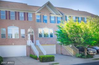 43091 Northlake Overlook Terrace, Leesburg, VA 20176 (#LO9949071) :: Pearson Smith Realty