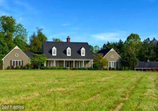 34642 Atoka Chase Lane, Middleburg, VA 20117 (#LO9949821) :: Pearson Smith Realty