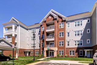 20655 Hope Spring Terrace #206, Ashburn, VA 20147 (#LO9950189) :: Wicker Homes Group