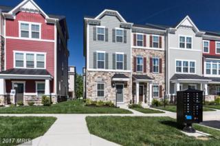 25007 Coats Square, Aldie, VA 20105 (#LO9950376) :: Pearson Smith Realty