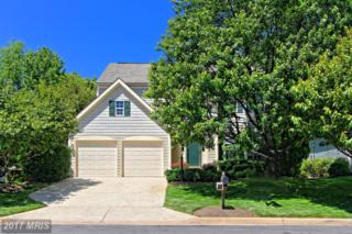 47748 Allegheny Circle, Sterling, VA 20165 (#LO9950648) :: Pearson Smith Realty