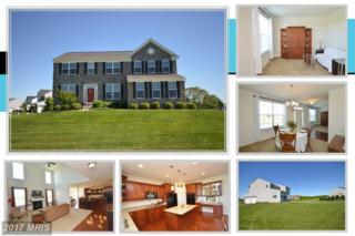36755 Pond Side Lane, Purcellville, VA 20132 (#LO9950690) :: Pearson Smith Realty