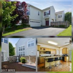 21935 Windover Drive, Broadlands, VA 20148 (#LO9951194) :: Wicker Homes Group