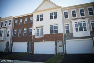 216 Miles Hawk Terrace, Purcellville, VA 20132 (#LO9951397) :: Pearson Smith Realty