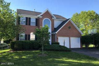 47825 Allegheny Circle, Sterling, VA 20165 (#LO9951687) :: Pearson Smith Realty