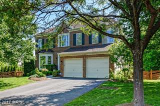 21280 Marsh Creek Drive, Broadlands, VA 20148 (#LO9952360) :: Wicker Homes Group