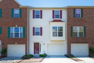 523 Sparkleberry Terrace NE, Leesburg, VA 20176 (#LO9952361) :: Pearson Smith Realty