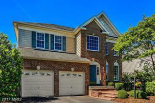 22837 Queensbridge Drive, Ashburn, VA 20148 (#LO9952598) :: Pearson Smith Realty