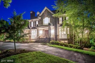 19109 Peale Lane, Leesburg, VA 20175 (#LO9952618) :: Pearson Smith Realty