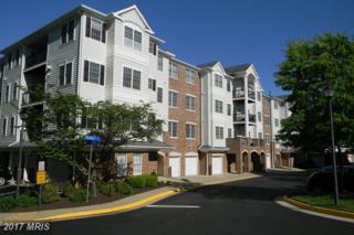 20804 Noble Terrace #420, Sterling, VA 20165 (#LO9953233) :: Pearson Smith Realty