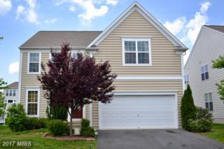 42766 Ravenglass Drive, Ashburn, VA 20148 (#LO9953582) :: Pearson Smith Realty