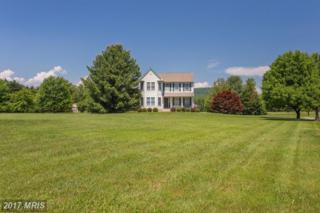 37170 Koerner Lane, Purcellville, VA 20132 (#LO9953675) :: Pearson Smith Realty