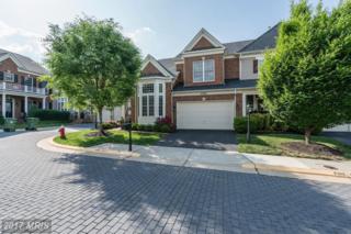43664 Jernigan Terrace, Leesburg, VA 20176 (#LO9953850) :: Wicker Homes Group