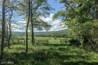 Trappe Road, Bluemont, VA 20135 (#LO9954149) :: Pearson Smith Realty