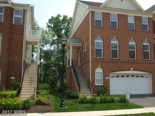 43399 Briar Creek Terrace, Ashburn, VA 20147 (#LO9954377) :: Pearson Smith Realty