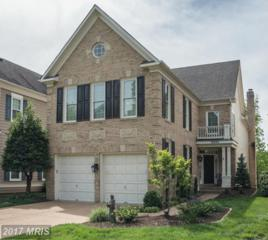 20293 Water Mark Place, Sterling, VA 20165 (#LO9954399) :: Pearson Smith Realty