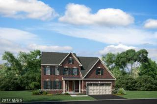 25983 Lilac Oaks Drive, Aldie, VA 20105 (#LO9954613) :: Pearson Smith Realty