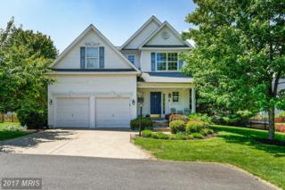 21501 Thornhill Place, Broadlands, VA 20148 (#LO9954630) :: Pearson Smith Realty