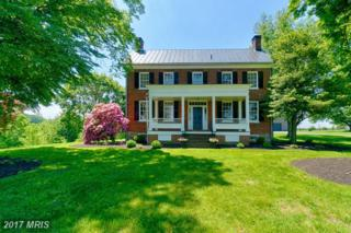 38083 Piggott Bottom Road, Purcellville, VA 20132 (#LO9954689) :: Pearson Smith Realty
