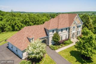 17170 Bold Venture Drive, Leesburg, VA 20176 (#LO9954940) :: Pearson Smith Realty