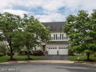 24963 Calcite Place, Aldie, VA 20105 (#LO9955312) :: Wicker Homes Group