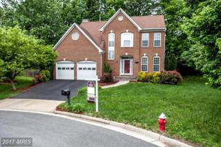 21309 Jackpine Court, Sterling, VA 20164 (#LO9955641) :: Pearson Smith Realty