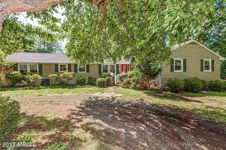 17520 Tranquility Road, Purcellville, VA 20132 (#LO9955976) :: Pearson Smith Realty