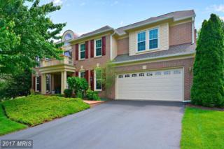 43259 Watershed Court, Ashburn, VA 20147 (#LO9956358) :: Pearson Smith Realty