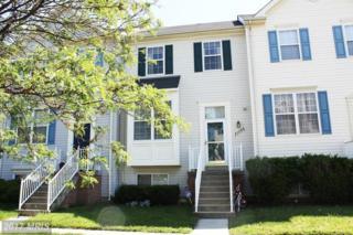 21056 Mossy Glen Terrace, Ashburn, VA 20147 (#LO9956479) :: Wicker Homes Group