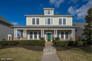 43914 Kittiwake Drive, Leesburg, VA 20176 (#LO9956641) :: Wicker Homes Group