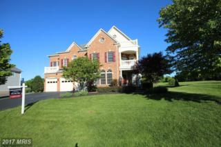 16600 Ferriers Court, Leesburg, VA 20176 (#LO9956793) :: Pearson Smith Realty