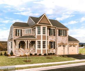 0 Creekside Green Place, Round Hill, VA 20141 (#LO9956841) :: Pearson Smith Realty