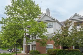 20313 Beechwood Terrace #102, Ashburn, VA 20147 (#LO9957117) :: A-K Real Estate