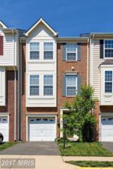 536 Legrace Terrace NE, Leesburg, VA 20176 (#LO9957576) :: Pearson Smith Realty