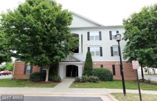 42537 Rockrose Square #101, Ashburn, VA 20148 (#LO9957679) :: Pearson Smith Realty