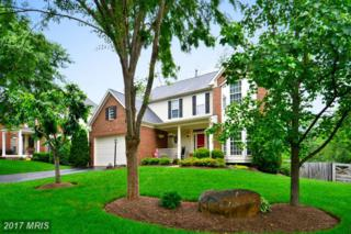 42738 Middle Ridge Place, Broadlands, VA 20148 (#LO9957692) :: Pearson Smith Realty