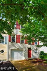 46567 Riverwood Terrace, Sterling, VA 20165 (#LO9957696) :: LoCoMusings