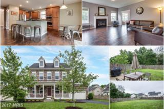 41993 Donnington Place, Ashburn, VA 20148 (#LO9957876) :: Pearson Smith Realty