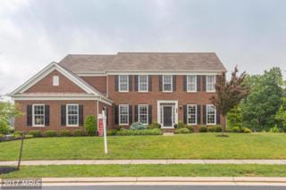 41442 Hagley Place, Leesburg, VA 20175 (#LO9957898) :: Pearson Smith Realty