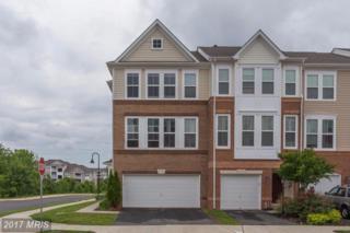 21752 Harroun Terrace, Ashburn, VA 20147 (#LO9958147) :: Wicker Homes Group