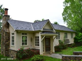 23045 Kirk Branch Road, Middleburg, VA 20117 (#LO9958647) :: Arlington Realty, Inc.