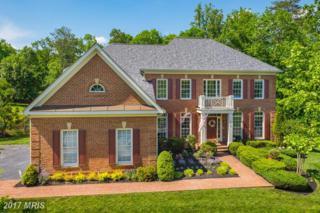 18725 Upper Meadow Drive, Leesburg, VA 20176 (#LO9958706) :: Wicker Homes Group