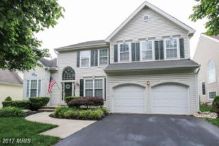 21331 Fultonham Circle, Ashburn, VA 20147 (#LO9959036) :: Wicker Homes Group