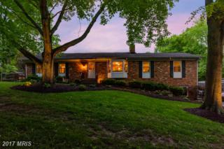 40748 Woodside Place, Leesburg, VA 20175 (#LO9959309) :: Pearson Smith Realty