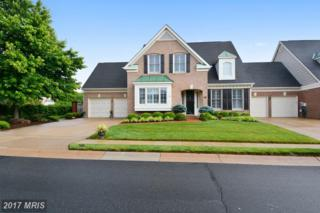 43672 Augusta National Terrace, Leesburg, VA 20176 (#LO9959555) :: Wicker Homes Group