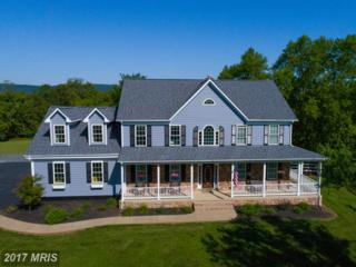 14515 Flax Court, Purcellville, VA 20132 (#LO9959631) :: Pearson Smith Realty